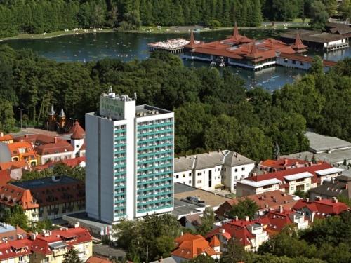 Гостиница Хунгуэст Панорама - Hunguest Hotel Panorama 3*. Термальный курорт Хевиз. Оздоровление и отдых круглый год.