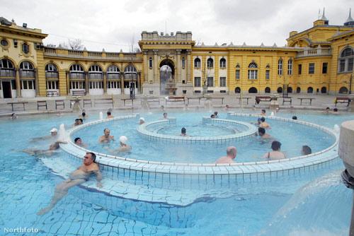 Курорты венгрии для суставов лучшие ортезы на коленный сустав